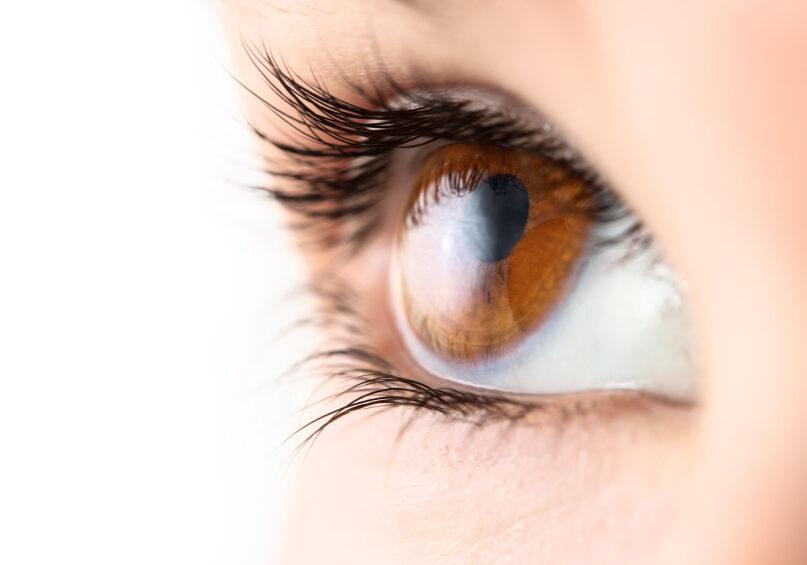 Macro of a brown eye.